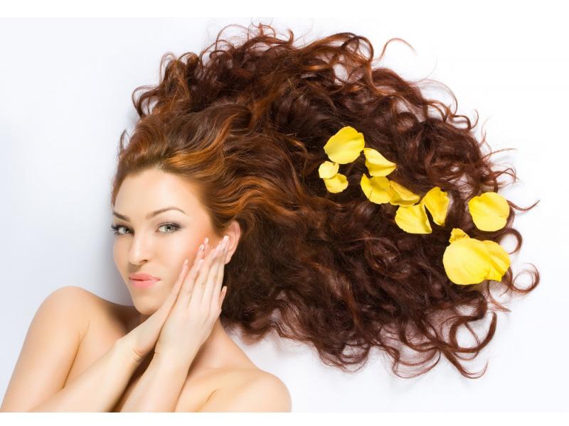 Die Wiederherstellung der trockene Haar