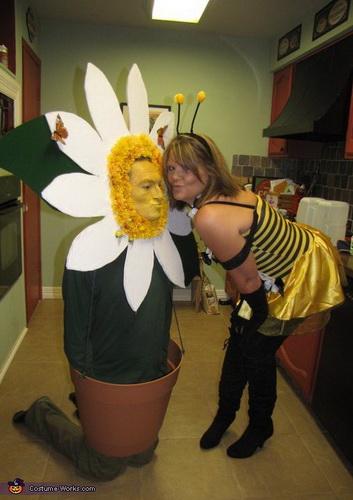 Halloween-Kostüm 2014